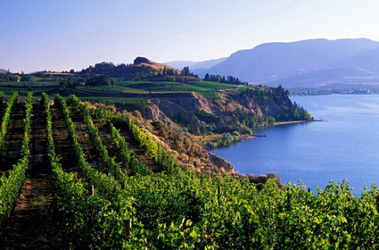 scenic vineyards cliffs lake