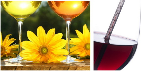 temperature wine newsletter