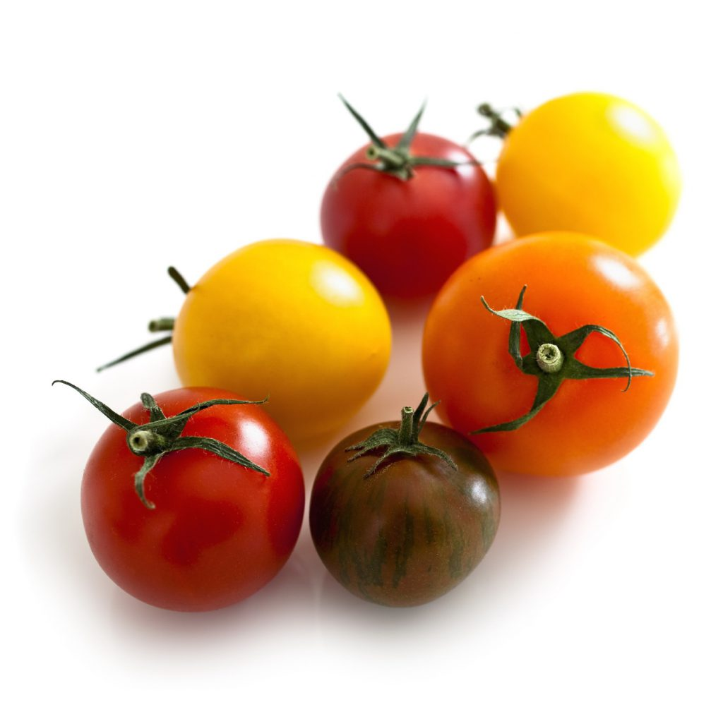 tomatoes xl