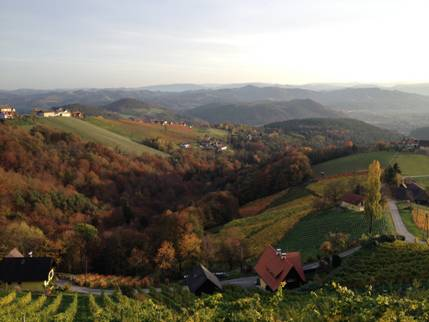 Austrian Wine Country
