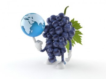 grapes globe cartoon