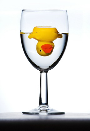 rubber duck in glass