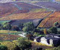 beaujolais countryside