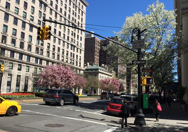 NYC May 2015