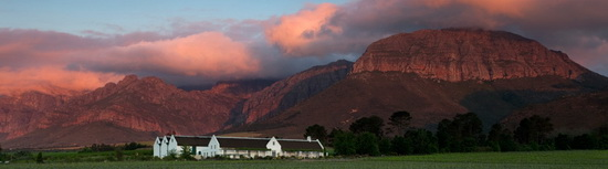 avondale winery South Africa