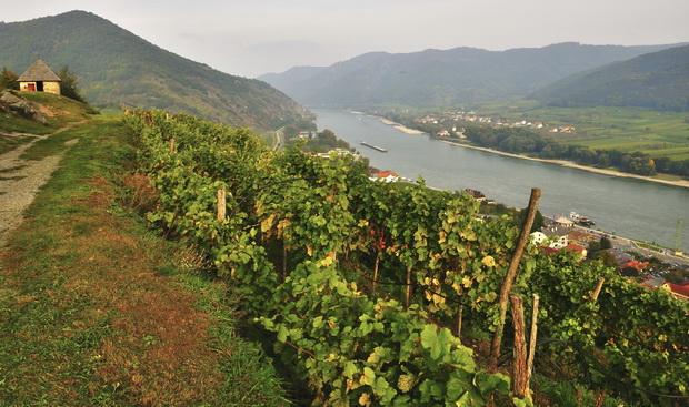 Austria Wachau River 2 xl (2)