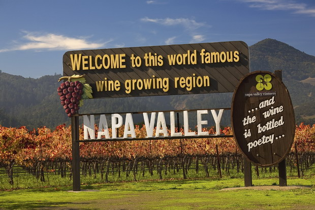 Famous Entrance Sign Vineyards Napa California Resubmit--In response to comments from reviewer have further processed image to reduce noise, sharpen focus and adjust lighting.