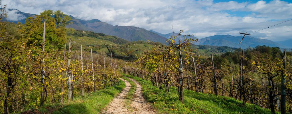 Prosecco Wine Route