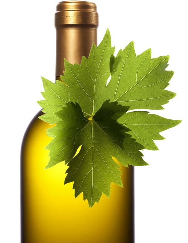 organic wine bottle xl (1)