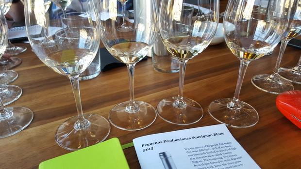jennifer-havers-1-wine-glasses-of-sb