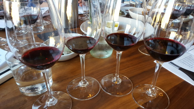 jennifer-havers-2-pinot-noir-wine-glasses