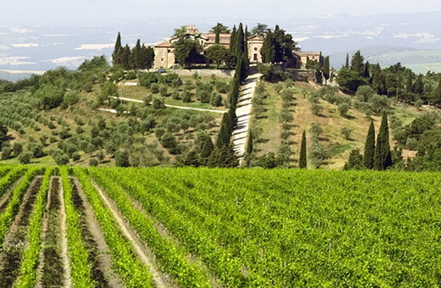 frescobaldi-winery-3