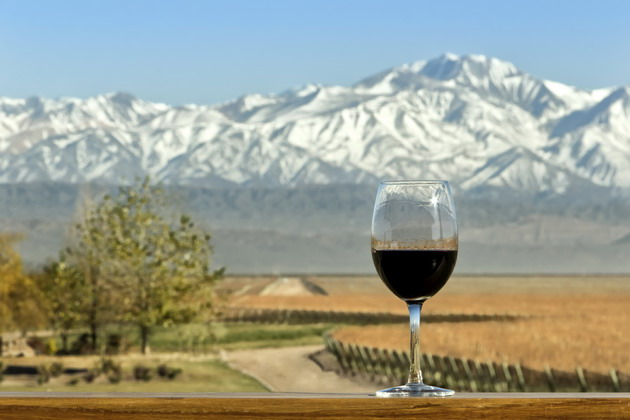 argentina-wine-andes-630