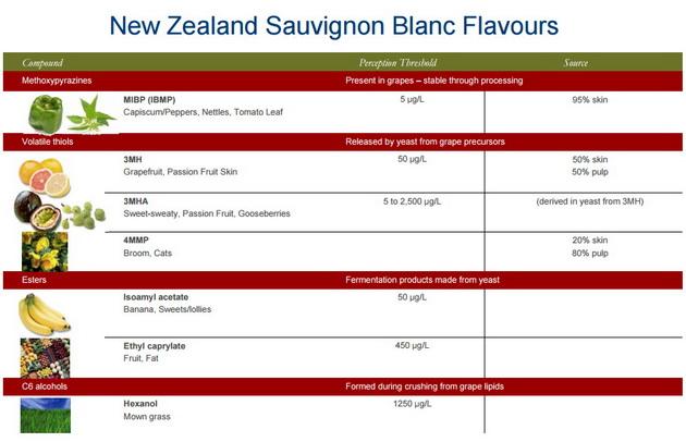 sauv-blanc-flavors
