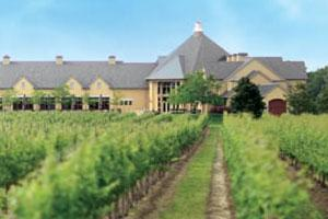 Experience Wine and Food at Peller Estates