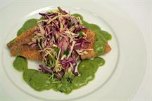 Masa Crusted Rockfish with Cabbage Slaw & Avocado Salsa