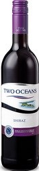 2009 Two Oceans Shiraz 2013