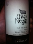 Oveja Negra Carignan by Via Wines 2009